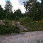 Lenas väg till skolan i Ludvika